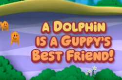 Dolphin Friend Title Card
