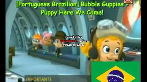 Portuguese Brazilian Bubble Guppies - Puppy Here We Come!
