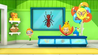 Bugs26