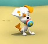 Bubble puppy sizzlie