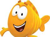 Mr. Grouper