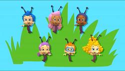 Bugs16