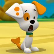 Bubble Puppy Surprised