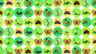 Bugs18
