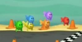 Colourful fish