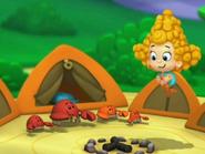 The campsiter