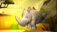 Rhino60