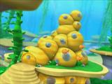 Bubbletucky