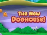 The New Doghouse!