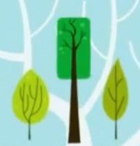 Tree sizes