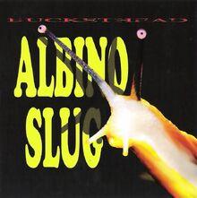 AlbinoSlug