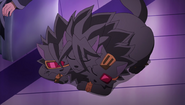 Cerberus SD (Season 3) Sleeping