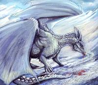 Holy Dragon, Schneesturm