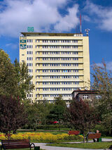 Katowice - GIG