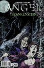 Angel vs Frankenstein cover