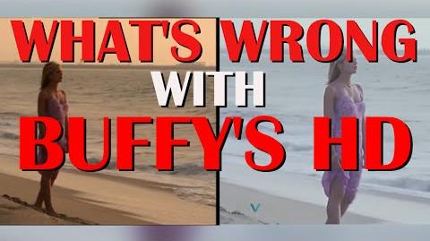 """BuffyHD/Official Team's Members' answers to the """"What's Wrong with Buffy's HD?"""" video."""