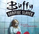 Slayer, Interrupted (2003)