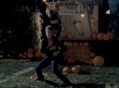 Pops Pumpkin Patch Buffy
