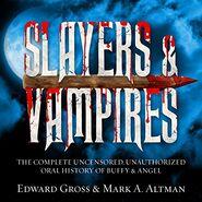 Slayers & Vampires audiobook