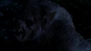 Nina as werewolf