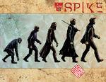 SpikeEvolution