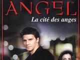 Angel (romans)