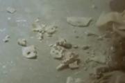 Inca mummy dust