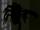 Araignées de la Boîte de Gavrock