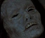 The Inca Mummy