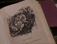 Le Bezoar dans le livre