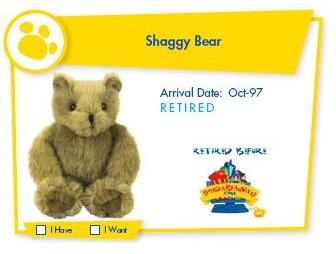 Shaggy Bear