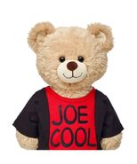 Joe Cool Shirt on Bear