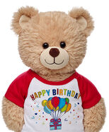 Red Happy Birthday T-Shirt on Bear