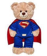 Superman Costume shown on Bear