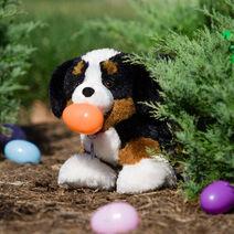 Promise Pets™ Bernese Mountain Dog 2