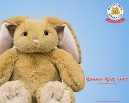 BunnyBigEars 1280