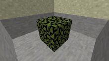 LeafBlock