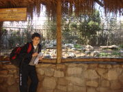 Buin zoo vicente 025