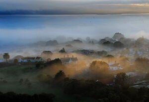 Devonport mist