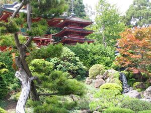 Japaneseteagardensf