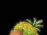 No.005 Tortoise