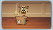 Chester playing with box 3