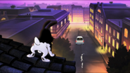 Bunnicula on the roof