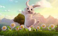 White rabbit 1680x1050