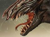 Wraith race