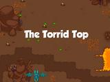 The Torrid Top