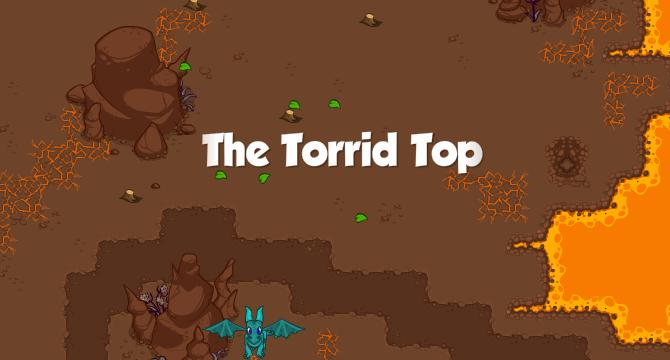 The Torrid Top Banner