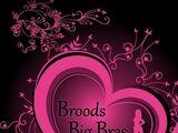 Broods Big Bras