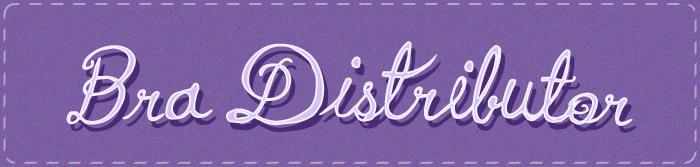Category-image-bra-distributor