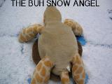 Omega Turtle